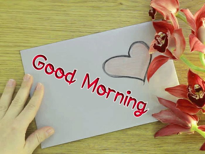 nice love Good Morning images hd