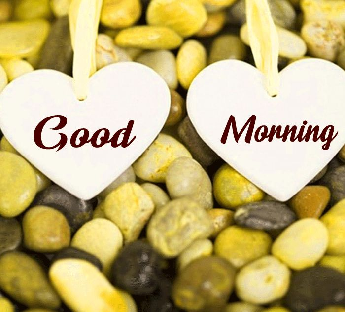 two white heart Good Morning photo hd
