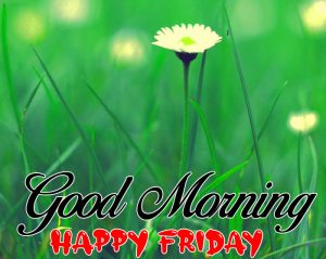 latest Good Morning Happy Friday yellow images hd
