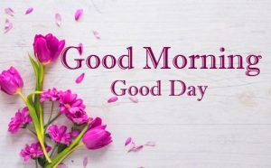 Purple Flowers with Good Morning Message