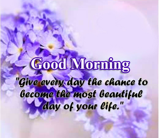 Beautiful Quotes with Flowers Good Morning Image