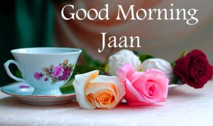 Cup with Roses Good Morning Jaan Image