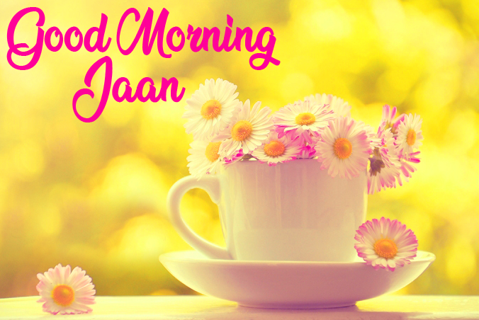 Flower Cup Good Morning Jaan Image