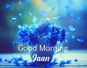 Flowers in Cup Good Morning Jaan Image