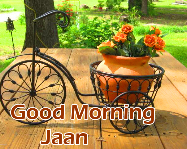 Good Morning Jaan with Flower Cycle