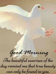 Good Morning Message Pic