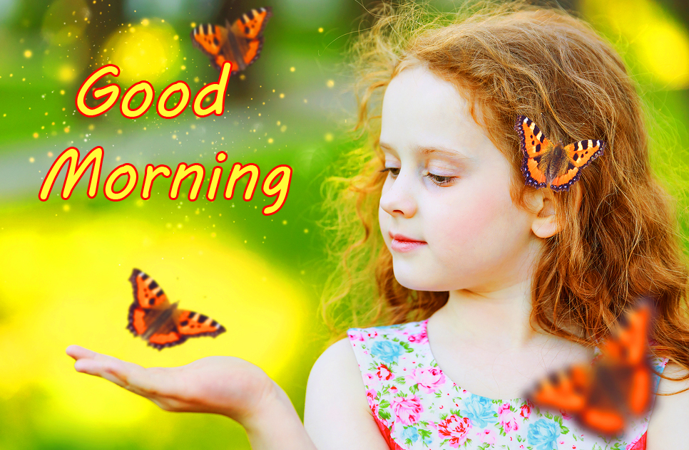 Good Morning with Butterfly and Girl Nature