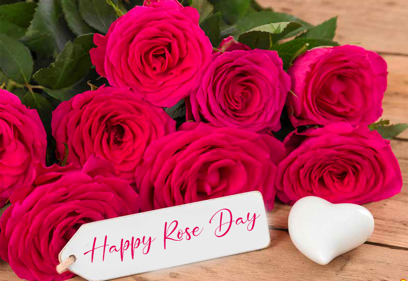 Happy Rose Day Card Pic