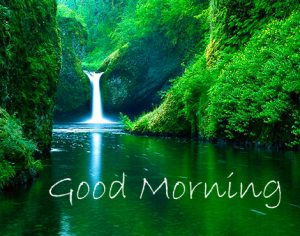 Nature Wallpaper with Good Morning Wish