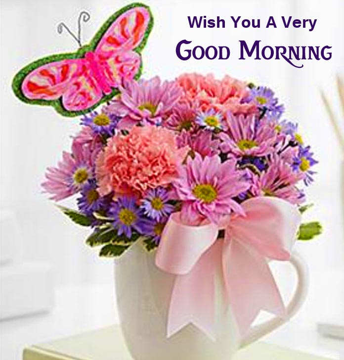 Beautiful Flowers Pot Wish You a Very Good Morning Picture