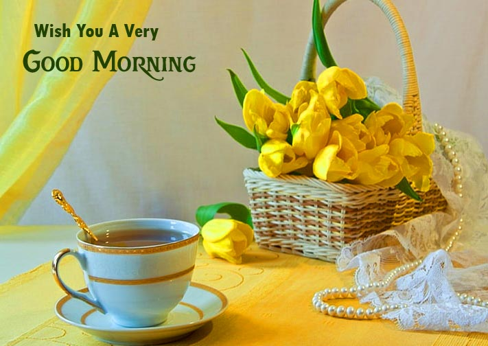 Beautiful Still Life Wish You a Very Good Morning Pic