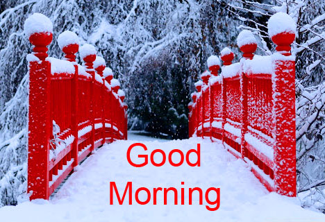Beautiful and Lovely Winter Good Morning Image