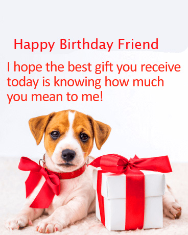 Cute Dog and Gift with Happy Birthday Friend Message