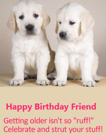 Cute Dogs Happy Birthday Friend Message Image