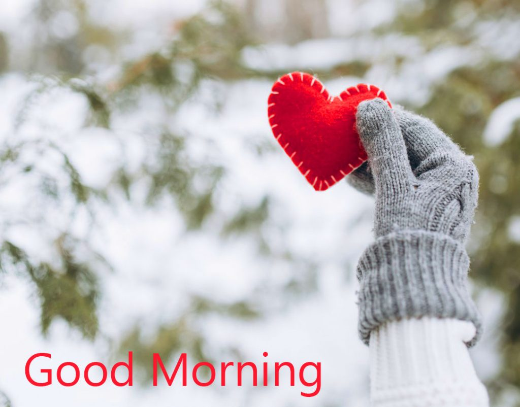 57+ Winter Good Morning Images and Pics (Latest Collection)