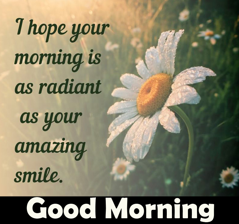 Good Morning Message with Flower