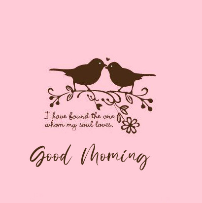 Good Morning with Love Birds