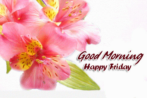 HD Flowers Good Morning Happy Friday Image