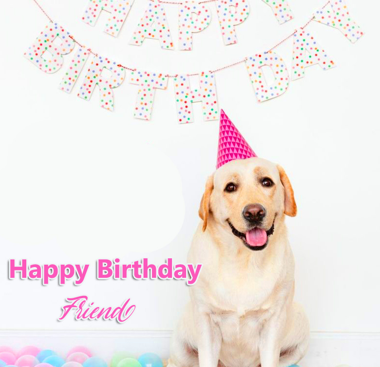 Happy Birthday Friend with Cute Party Dog