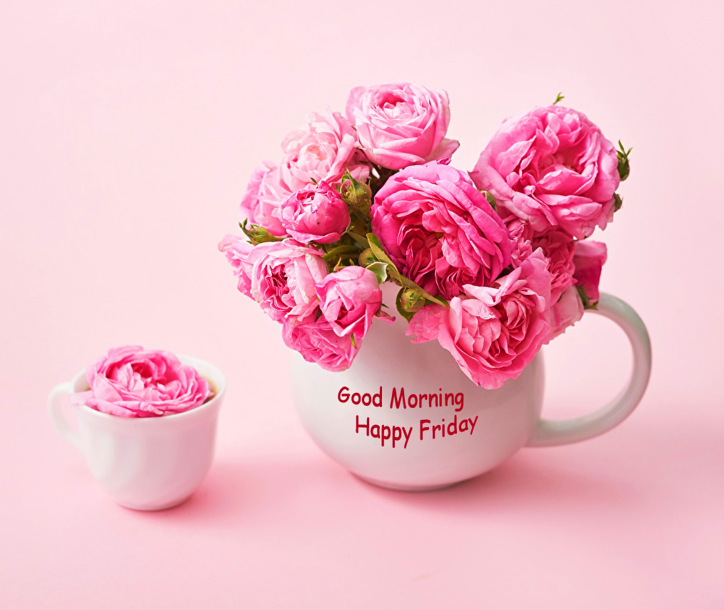 Pink Flowers in Cup with Good Morning Happy Friday Wish