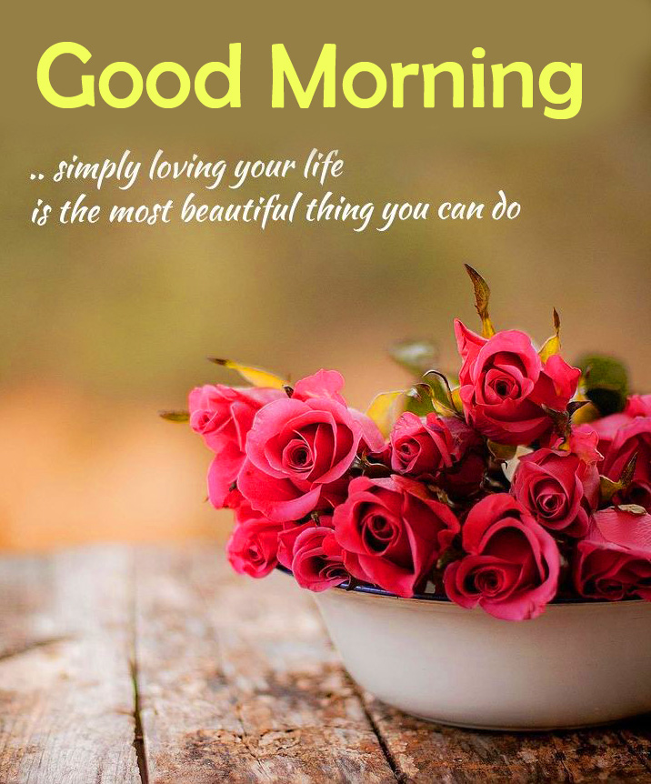 Quotes with Roses and Good Morning Wish