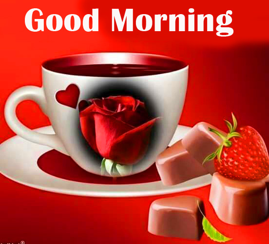 Red Rose Cup with Good Morning Wish