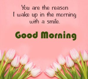 Romantic Good Morning Quotes with Flowers