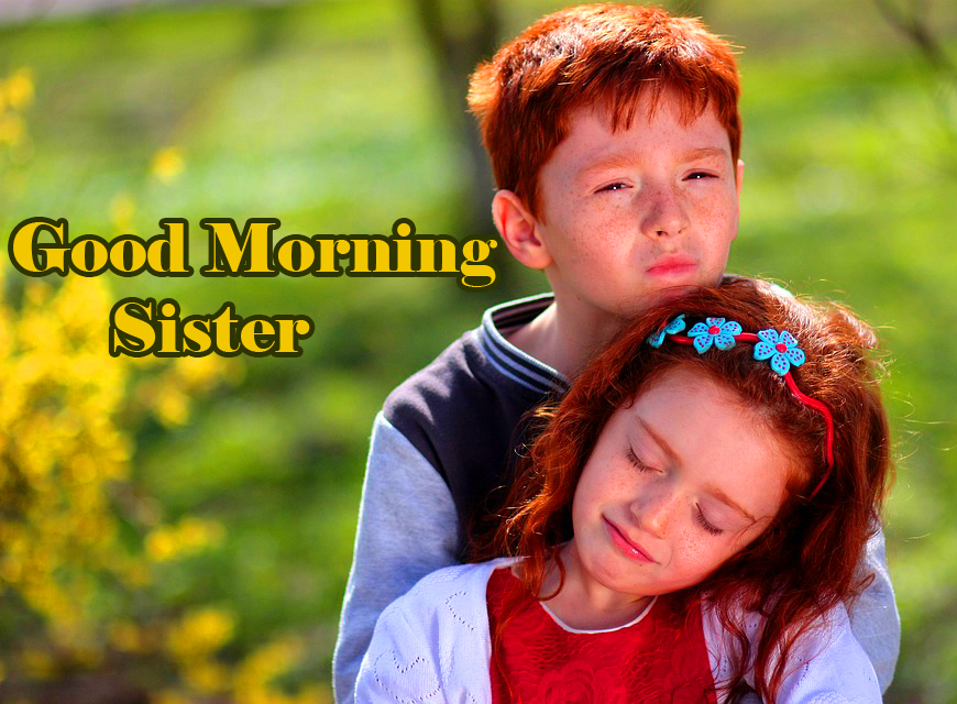 Beautiful Love Brother and Sister Good Morning Sister Image