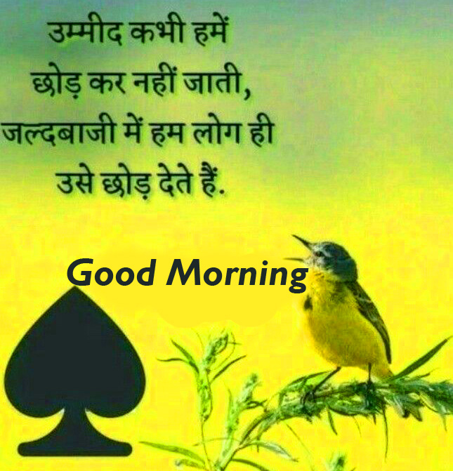 Good Morning Motivational Hindi Quote Picture