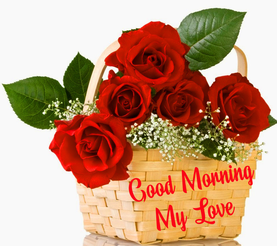 Latest Red Roses Basket Good Morning My Love Image