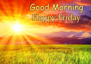 Sunshine Lovely Good Morning Happy Friday Image