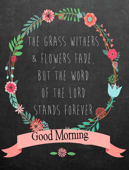 Best Good Morning Lord Quote Image