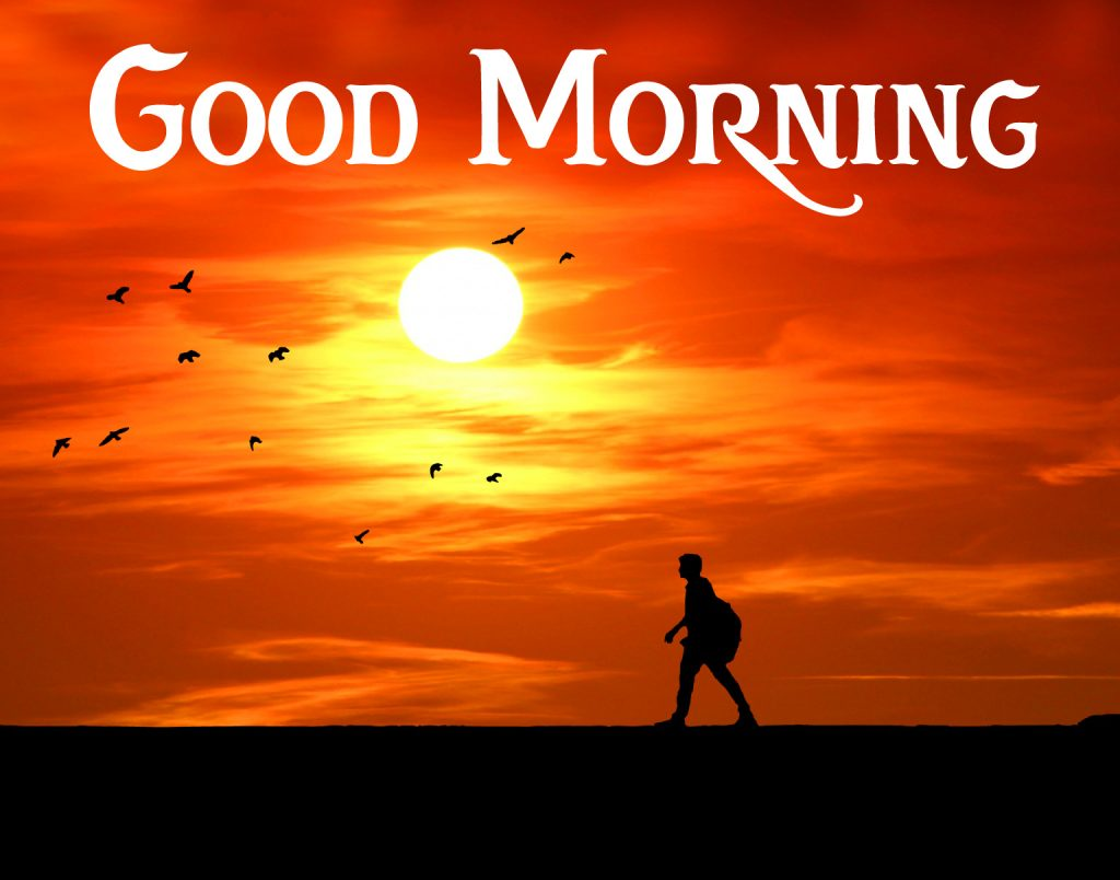 51+ Good Morning Images New 2021